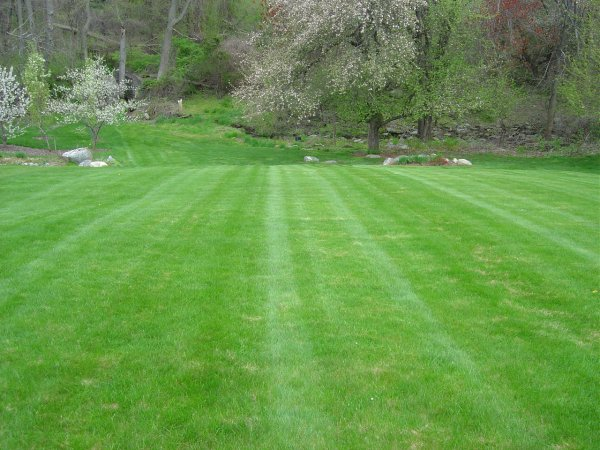 How to Start a Lawn Mowing Business - Yahoo! Voices - voices.yahoo.com